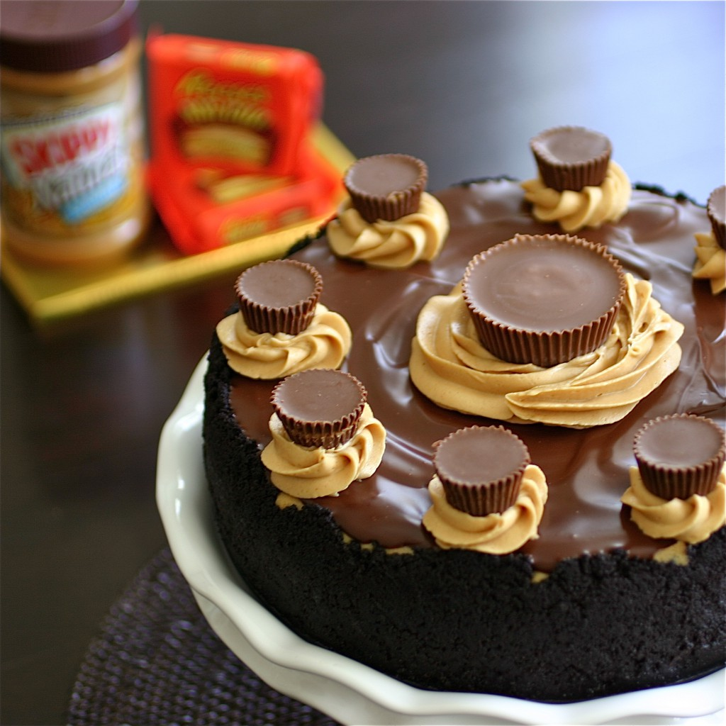 Peanut Butter Cup Cheesecake - Deliciously Declassified